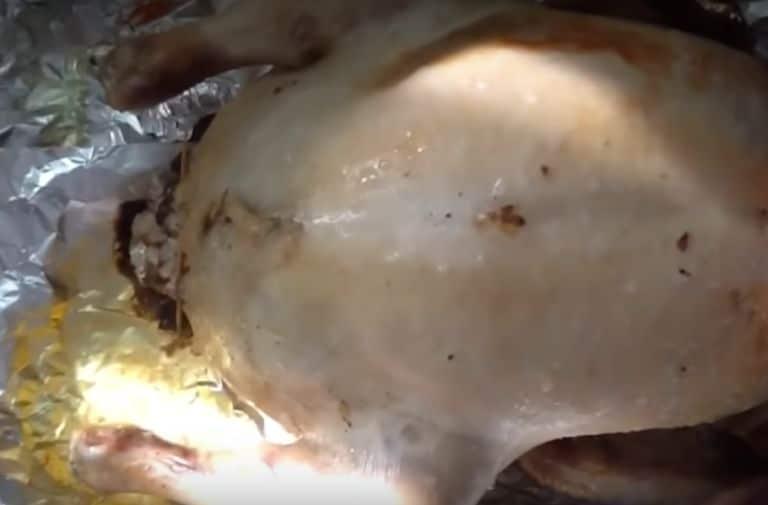 Утка с рисом, запечённая в духовке – рецепты приготовления в домашних условия