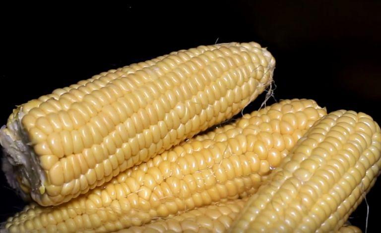 как варить кукурузу в мультиварке скороварке
