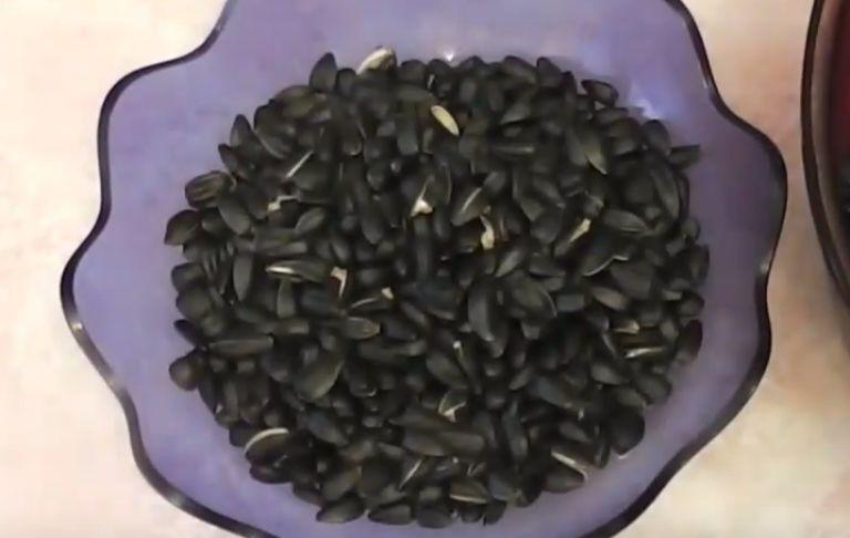 Как правильно пожарить семечки в микроволновке? 4 рецепта приготовления вкусных семечек в СВЧ