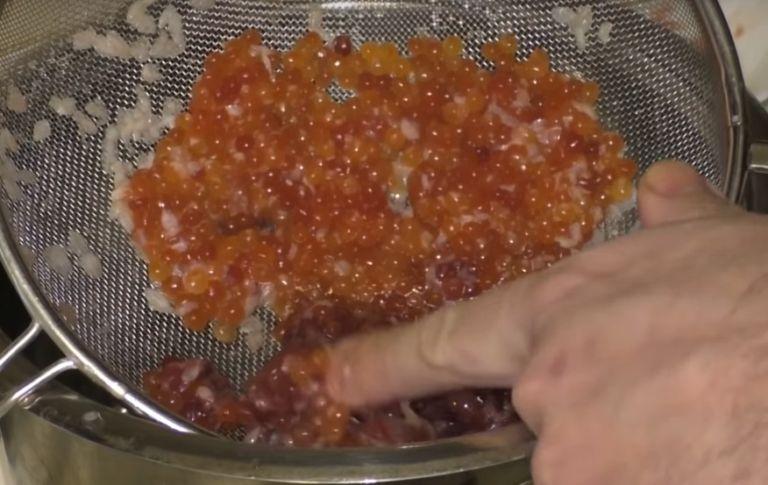 Как приготовить красную икру в домашних условиях? 5 простых рецептов