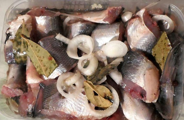 Как вкусно приготовить пелядь? 6 рецептов приготовления рыбы сырок в домашних условиях
