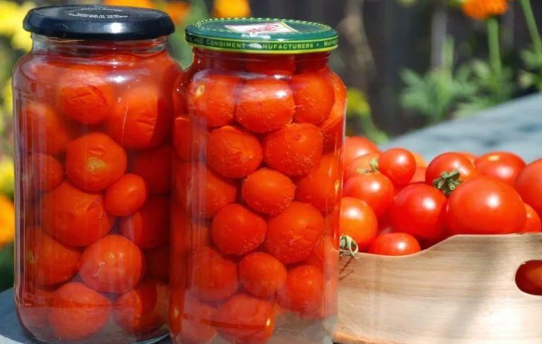 Засолка помидор холодным способом на зиму в банках - вкусные рецепты приготовления