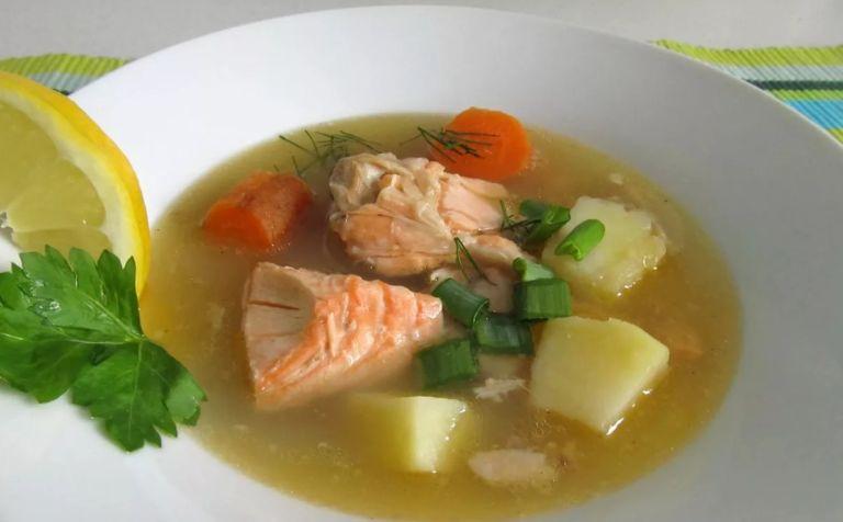 Суп из лосося - простые рецепты приготовления рыбного супа